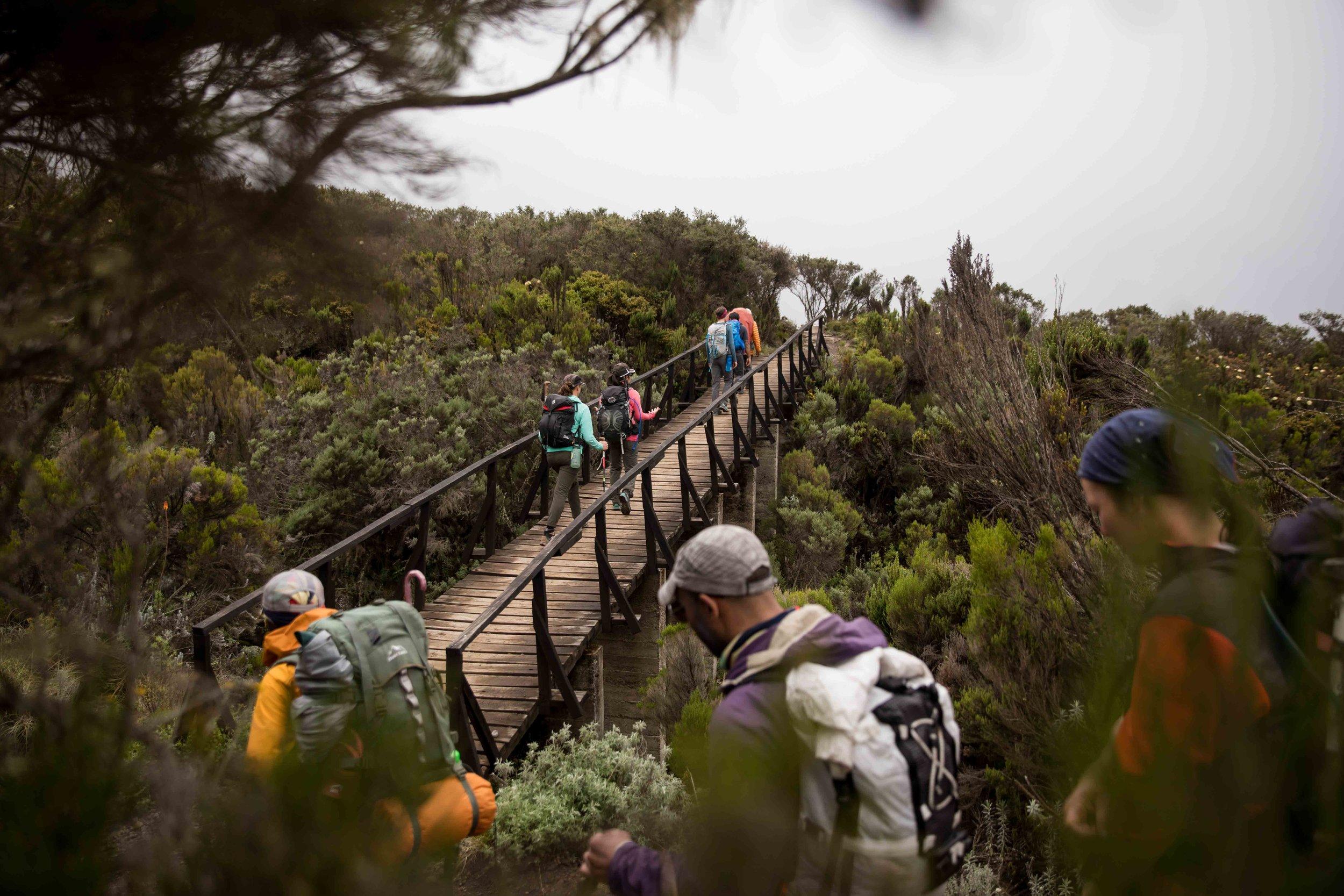 ajw_REI_Kilimanjaro-57.jpg
