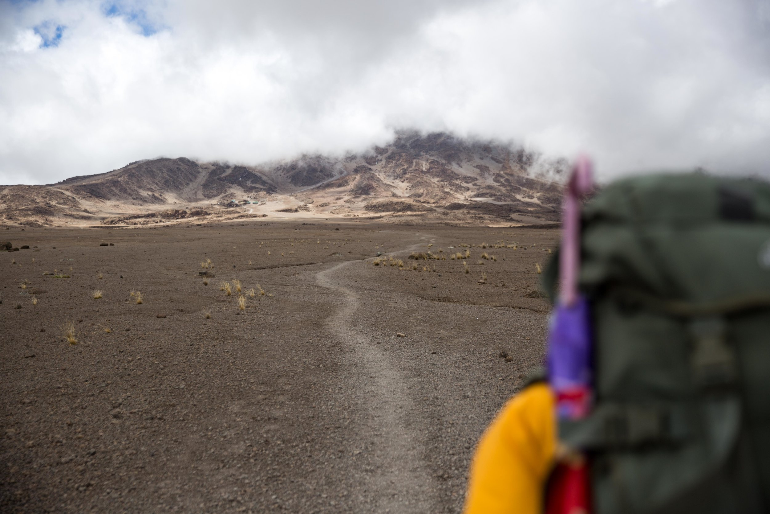 ajw_REI_Kilimanjaro-38.jpg