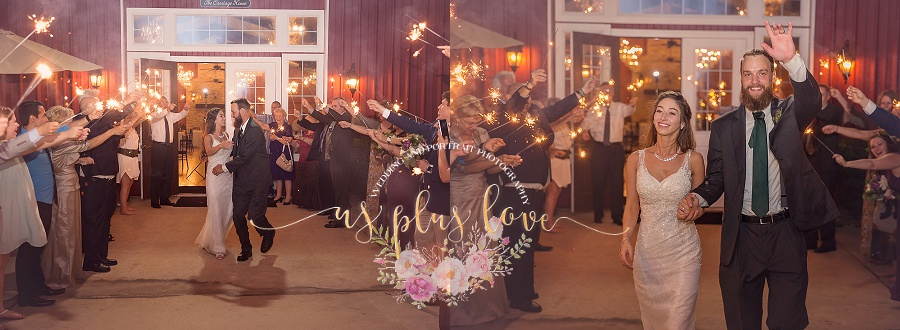sparkler-exit-wedding-reception-photos-woodlands-texas-houston-area-photographer-send-off-77381-ashelynn-manor-conroe-beard-groom-bride-kiss.jpg