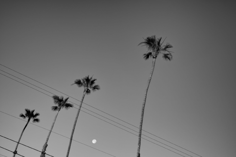 Cassidy Street Moon Rise