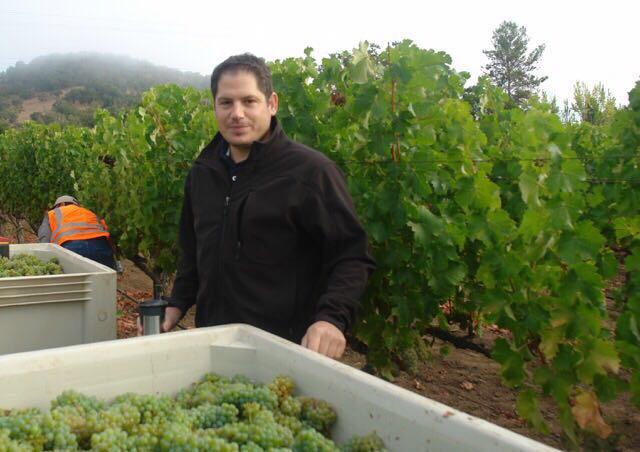 Maayan Koschitzky Winemaker.JPG