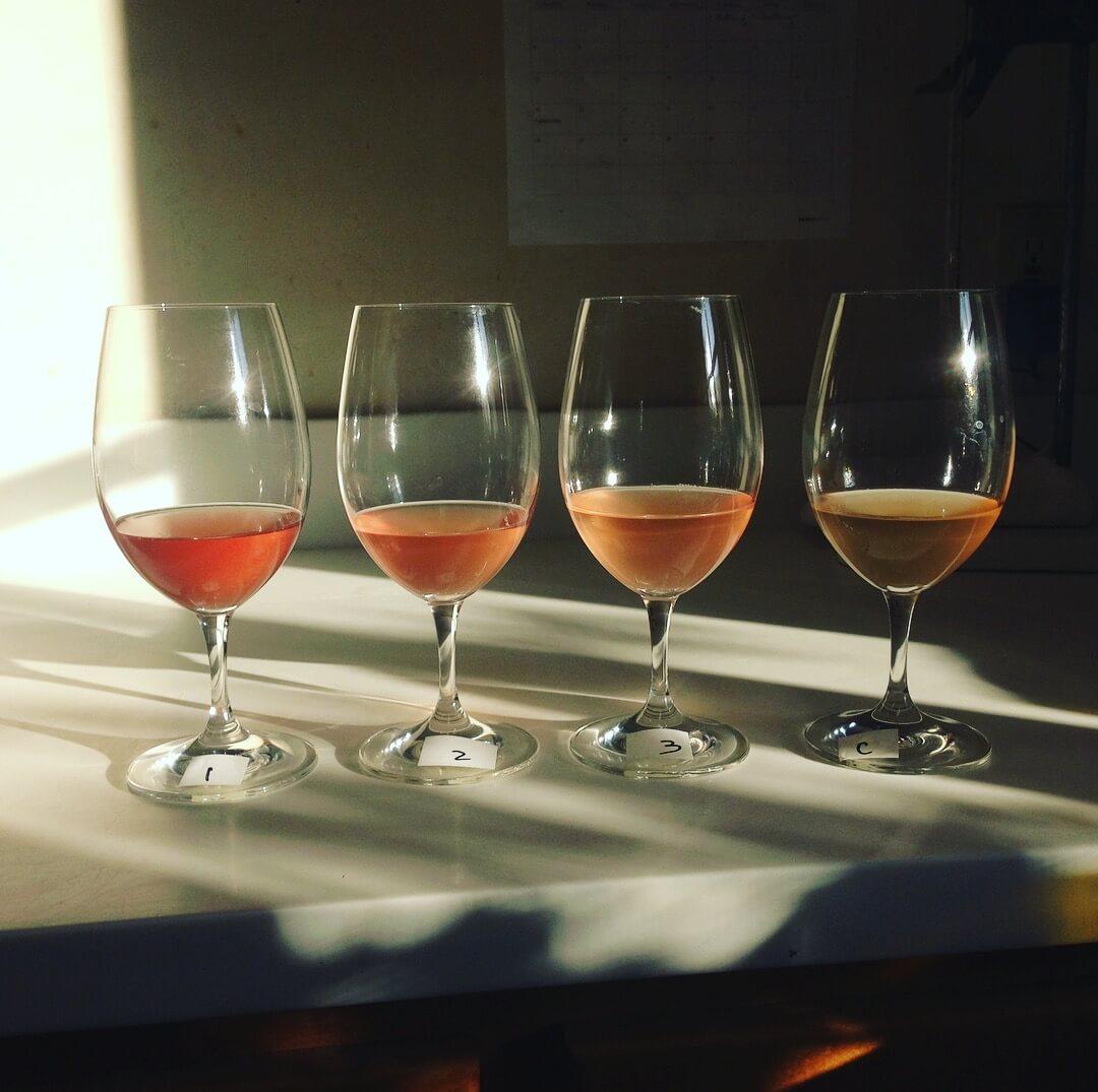 Seavey Rose Winemaking.JPG