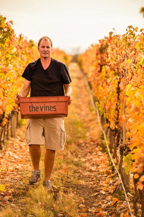 Vines of Mendoza Michael-Evans.jpg