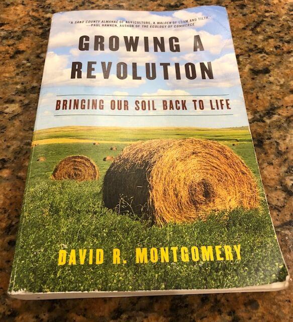 David Montgomery Book 2.jpeg