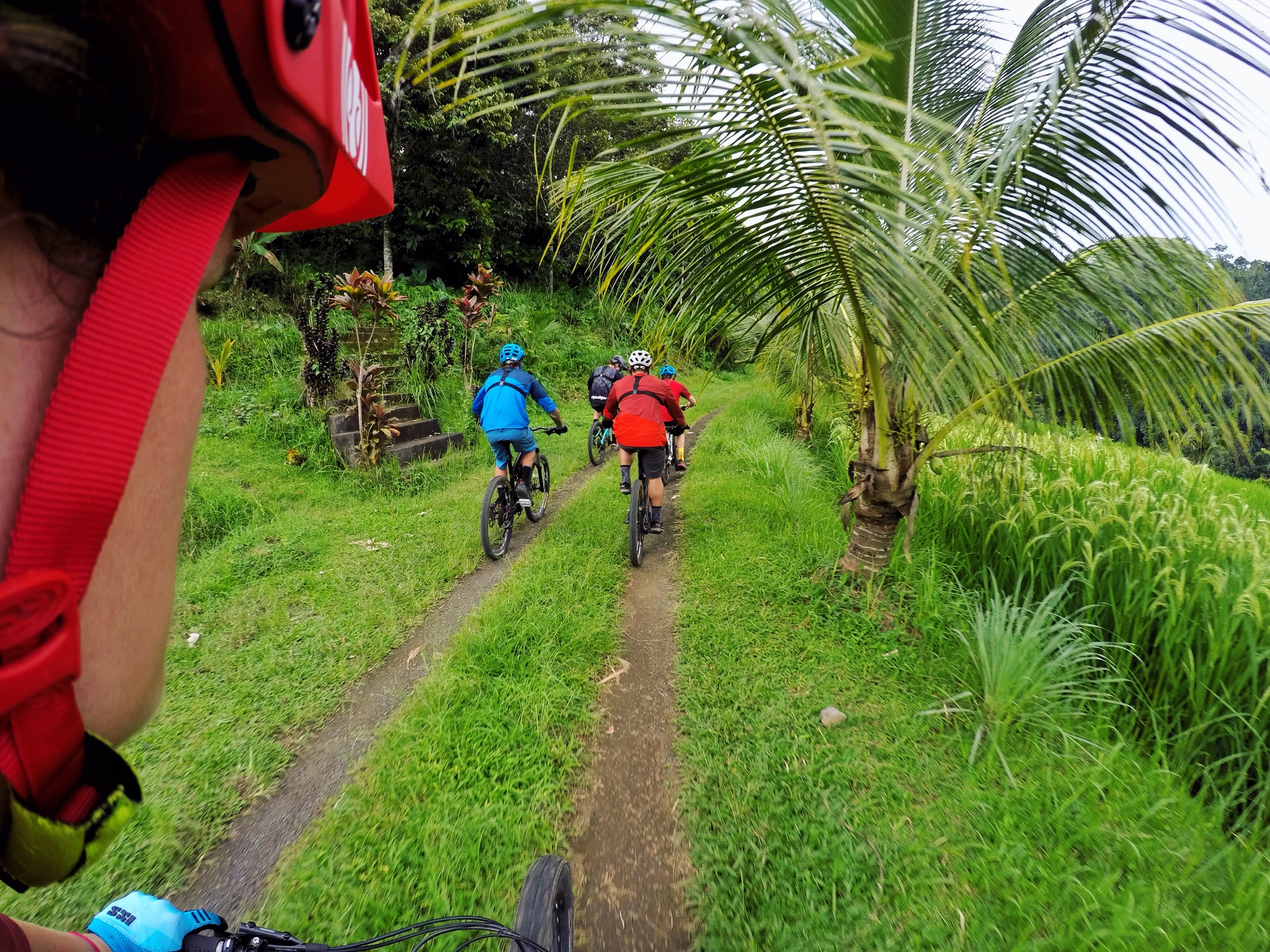 snaking double and singletrack roads wound their way through the rice fields.