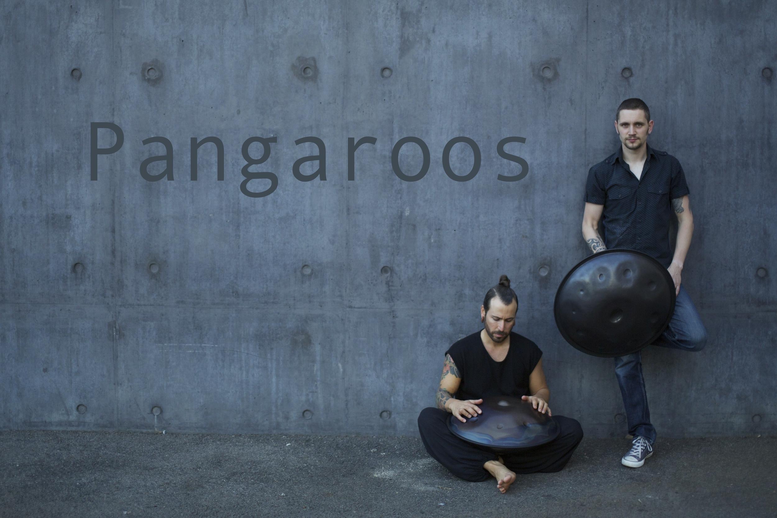 Pangaroos1 FINAL*.jpg
