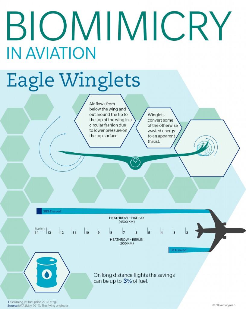 Biomimicry in aviation.jpg