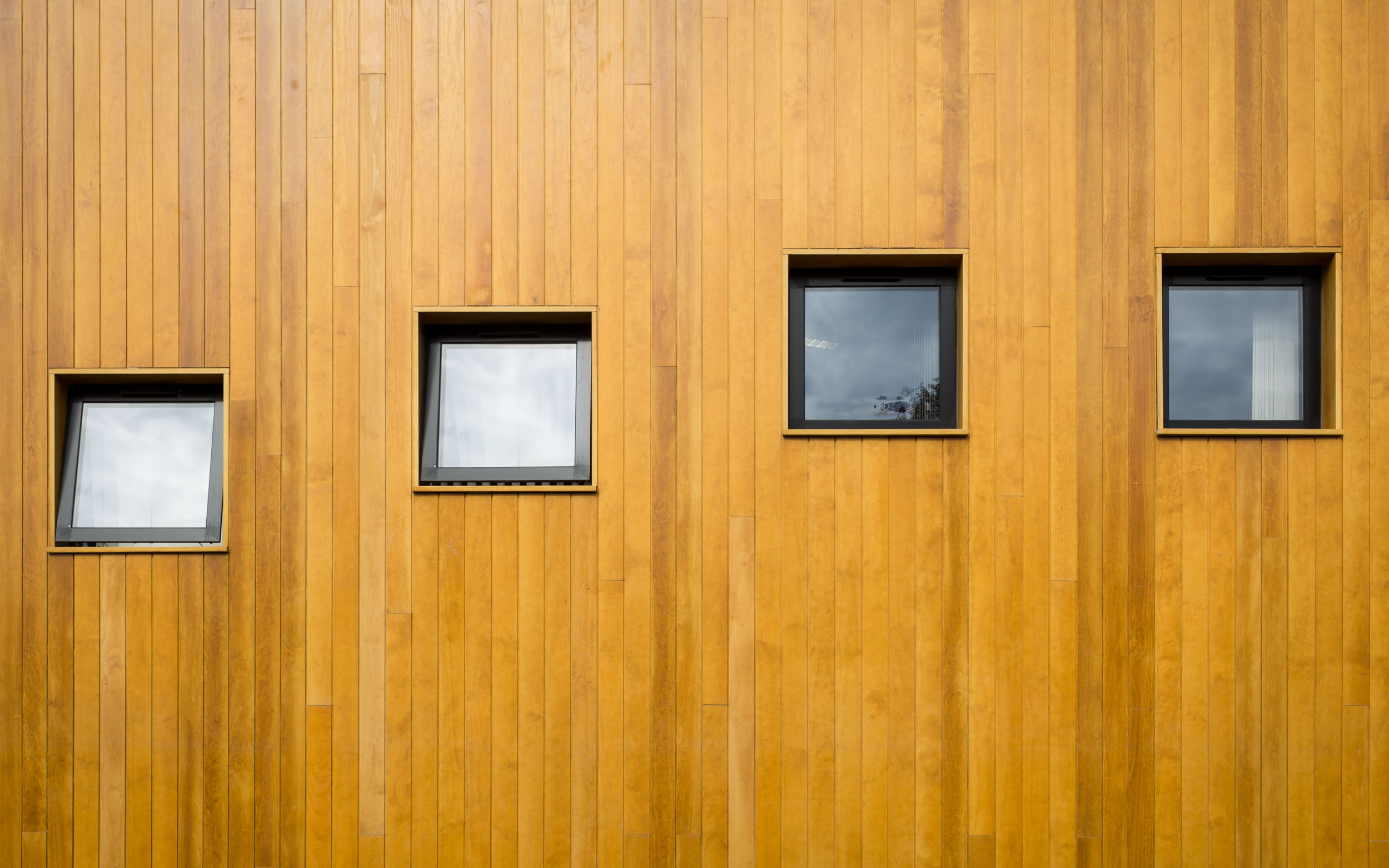 bradford royal infirmary temple bank house new building wooden cladding window detail.jpg