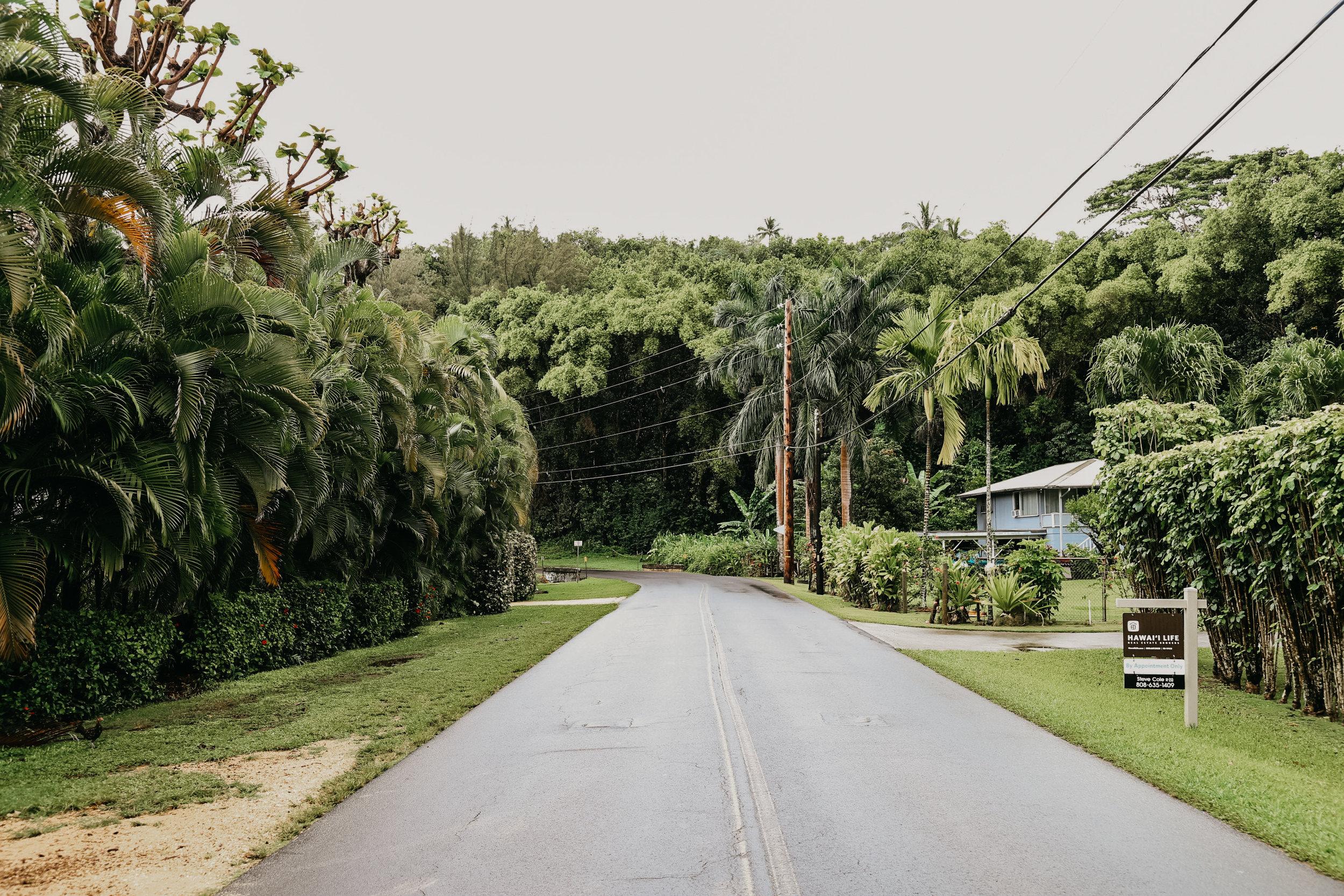 Hawaii32.jpg
