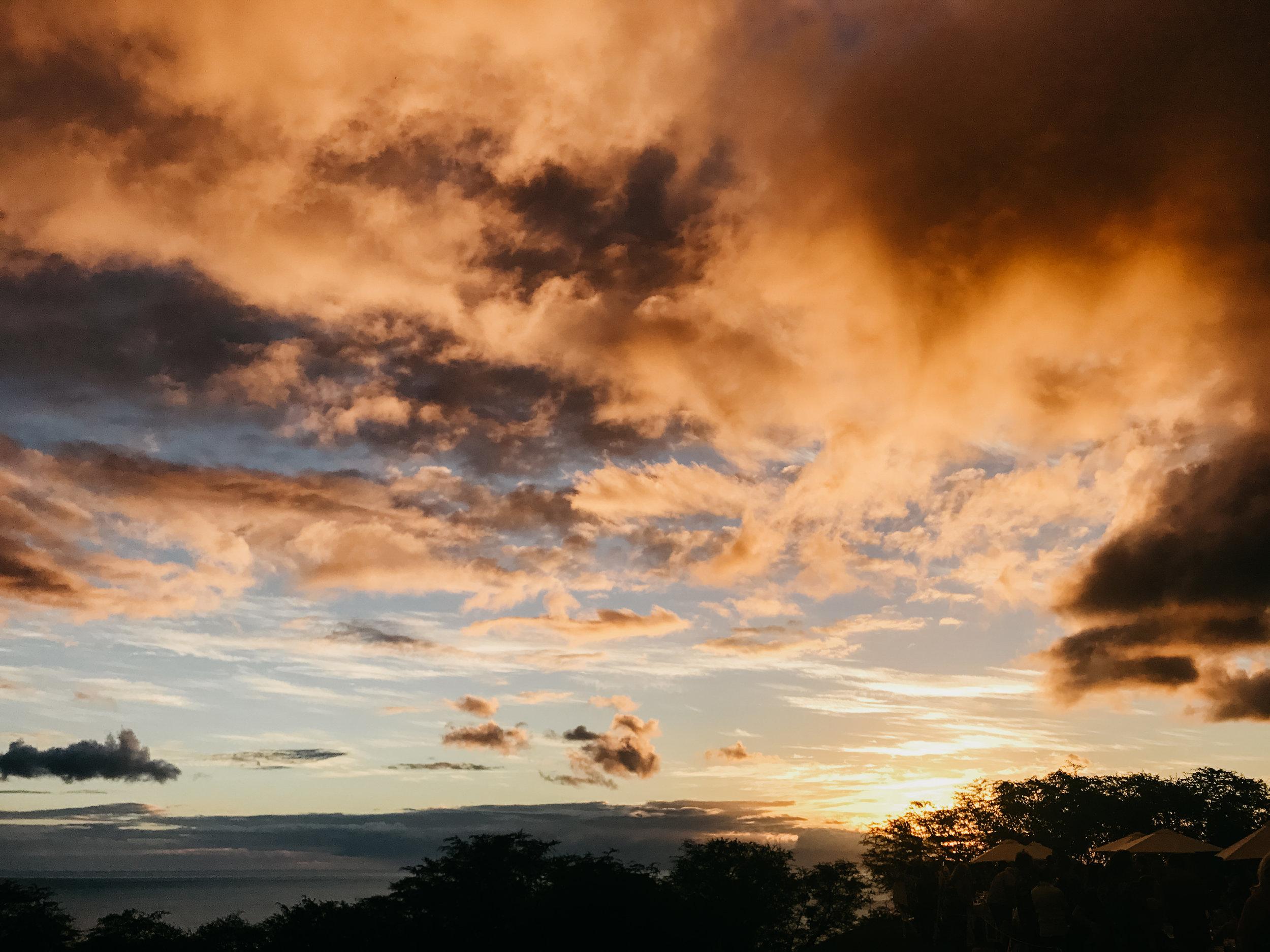 Hawaii310.jpg