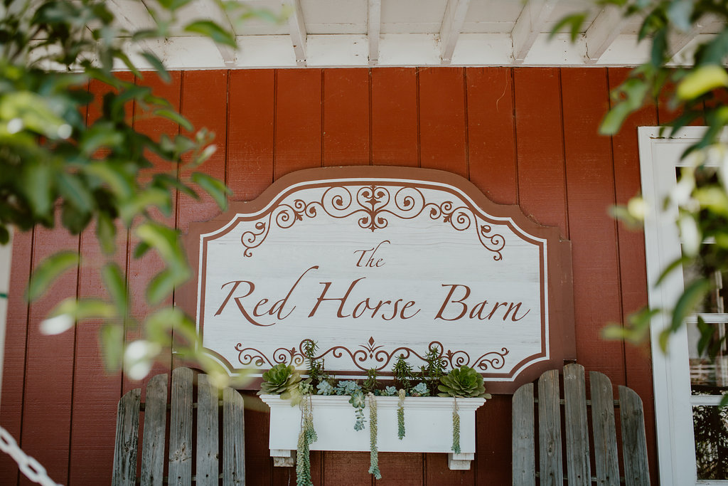 Red-Horse-Barn-Wedding-Diana-Lake-Photography-A&M-37.jpg