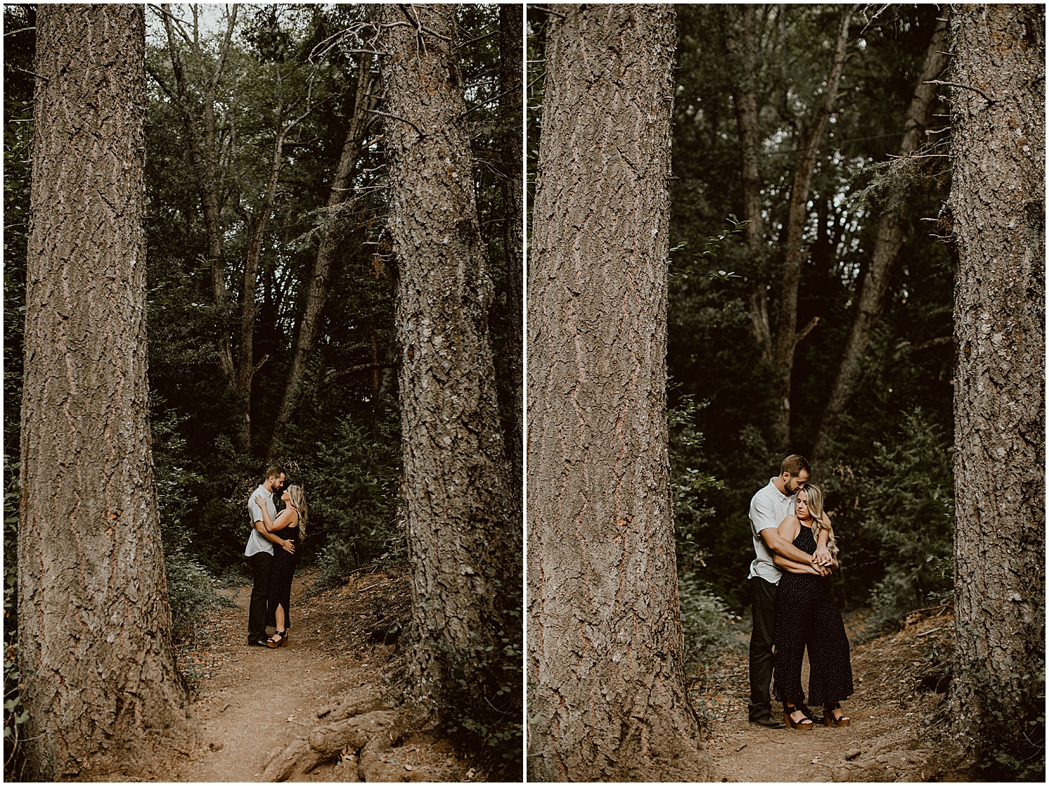 Palomar-Mountain-Engagement-D+M-Diana-Lake-Photography-118.jpg