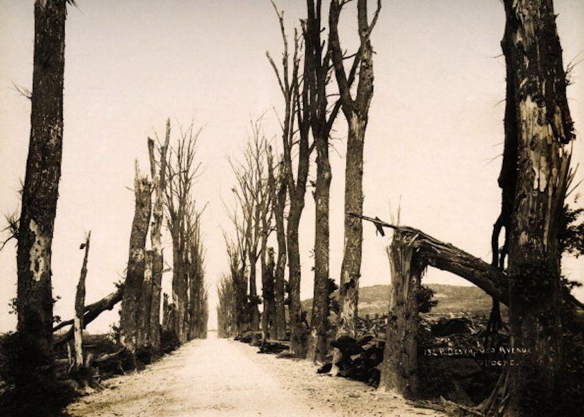 Road leading toward Locre