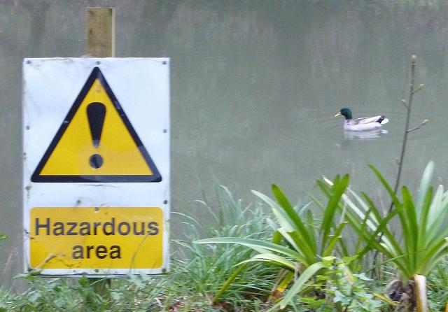 Hazardous area, by Terry Freedman