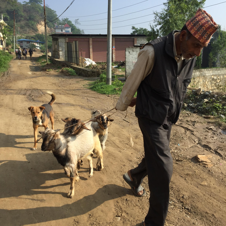 goat farmer.jpg