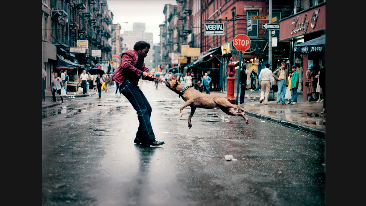 """His photographs' uncompromising, straight-ahead dignity...lingers long in the mind.""   —  Ronnie Schieb, Variety"