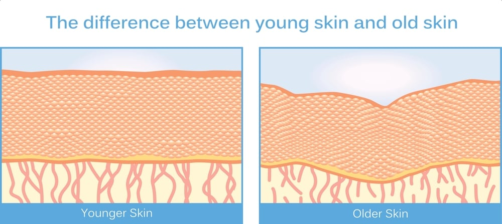 Growth Factors In Skin Care Siti Med Spa San Diego