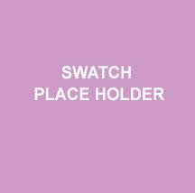 PLACE HOLDER CHIP 3.jpg
