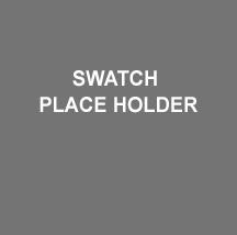 PLACE HOLDER CHIP 2.jpg