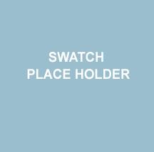 PLACE HOLDER CHIP 1.jpg