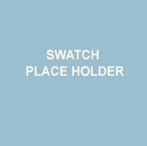 PLACE+HOLDER+CHIP+1.jpg