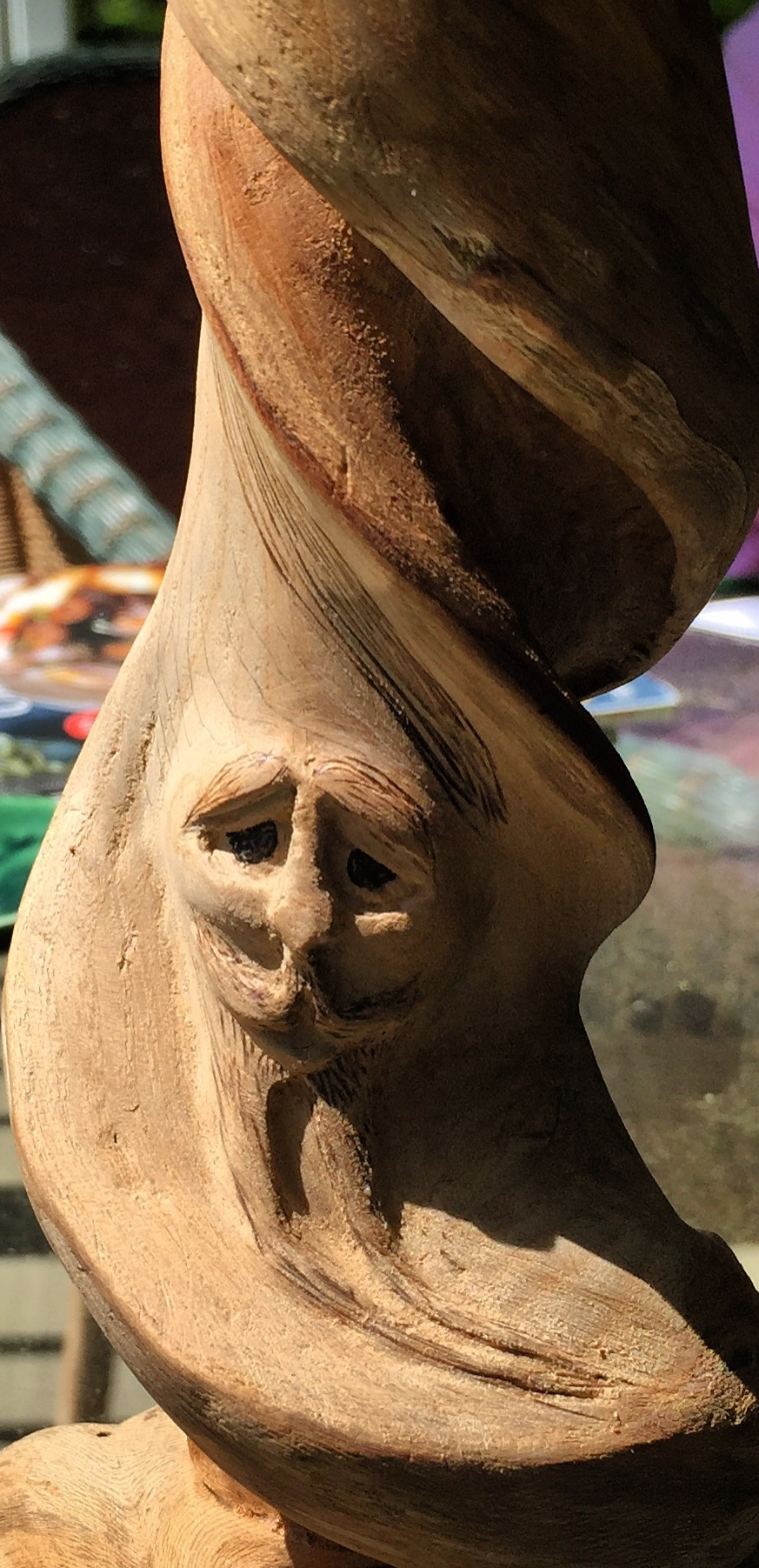Wood Spirit Carved in a Sassafras Branch