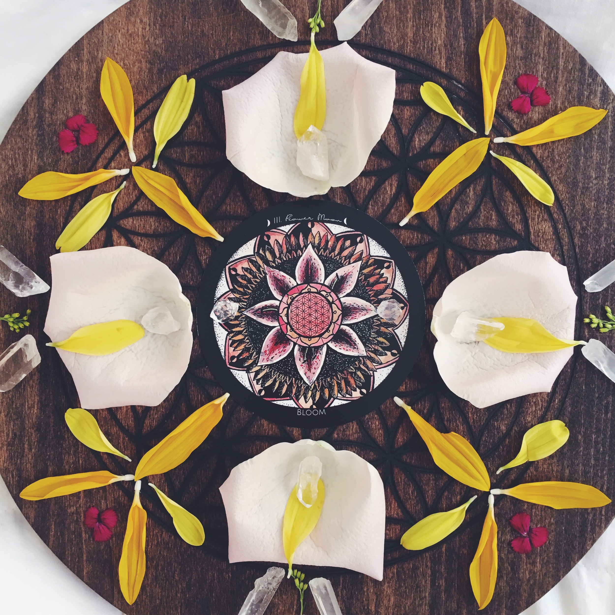 Flower Moondala - Spirit de la lune