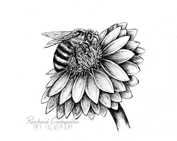 Tree Talker Art   Honey Bee