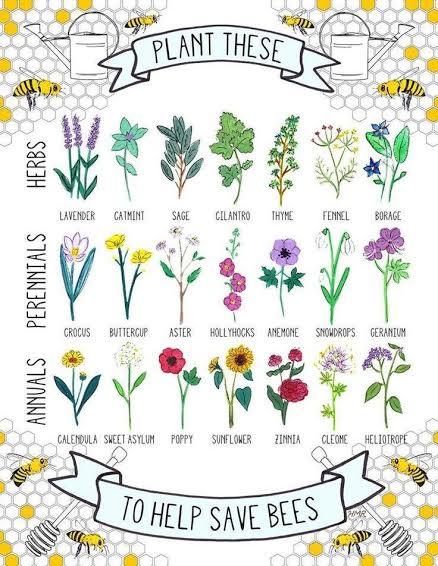 Save the Bees   Plant flowers   Spirit de la Lune Honey Moon Ceremony
