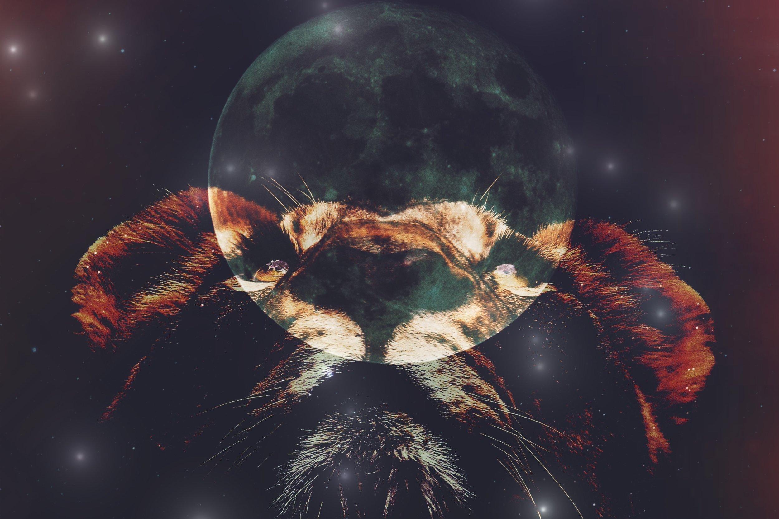 Full Blue Moon in Leo | Spirit de la Lune
