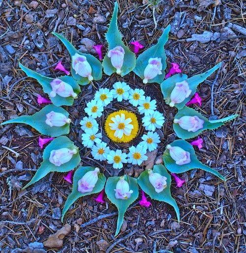 Flower mandala 3.jpg