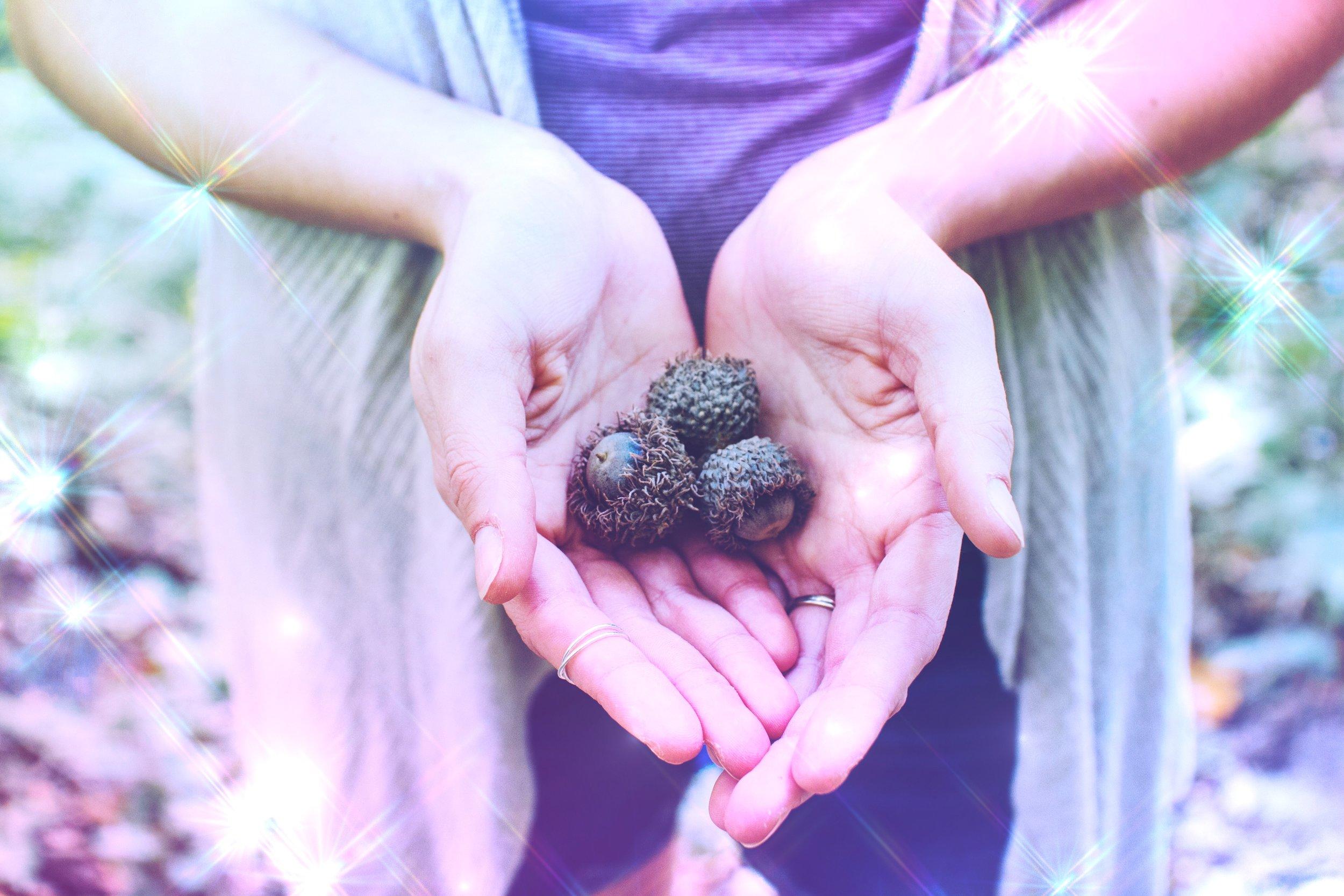 Cultivating Gratitude | Acts of Service | Spirit de la Lune
