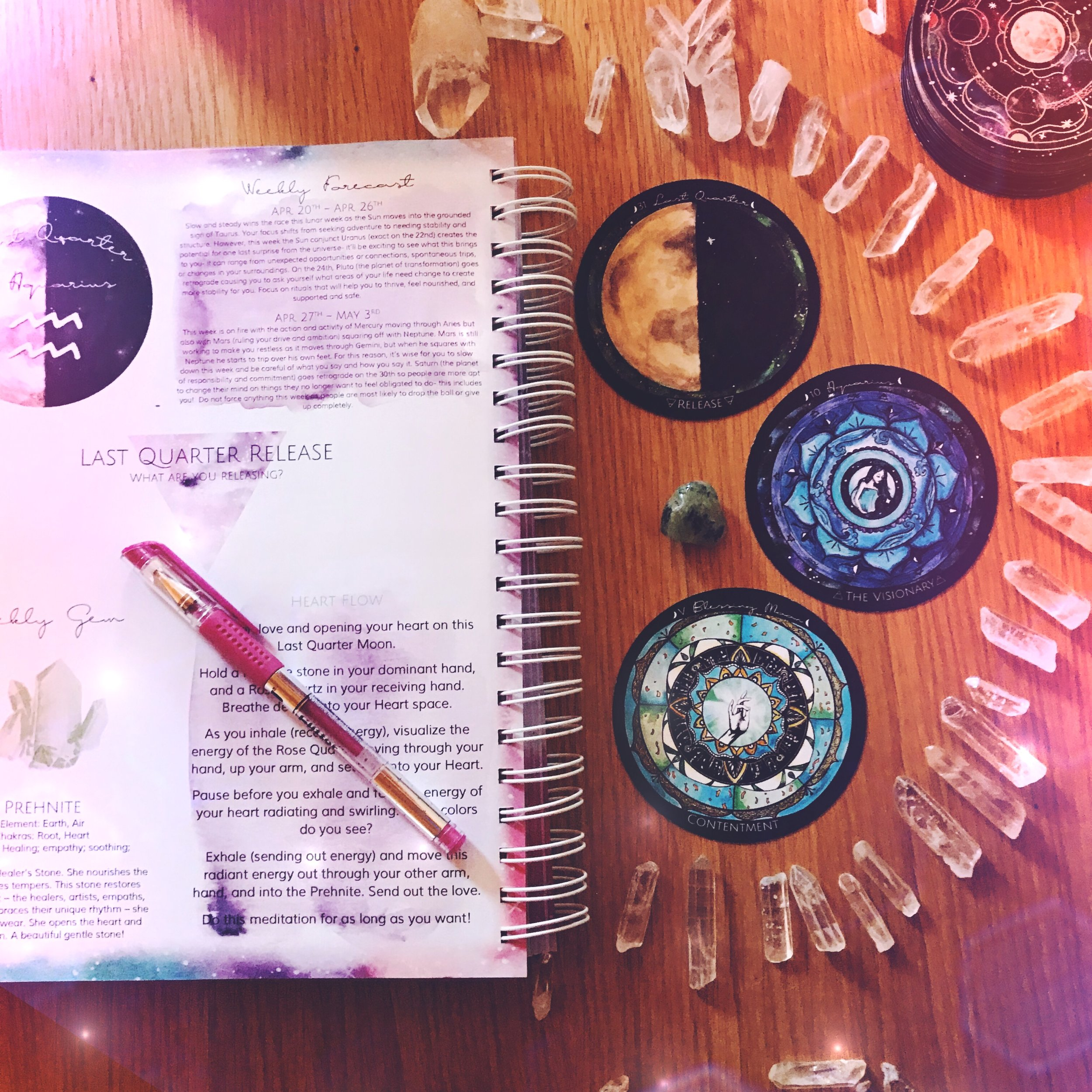 The Fire Relit: New Moon in Aries | Flower Moon Cycle Energy Reading