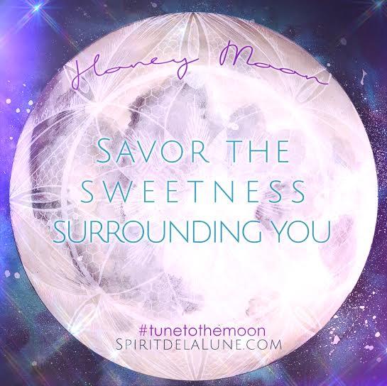 Spirit de la Lune Honey Moon in Sagittarius | Dandelion Divination Tea