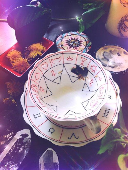 Dandelion Divination and Tea Leaf Reading  | Full Honey Moon in Sagittarius