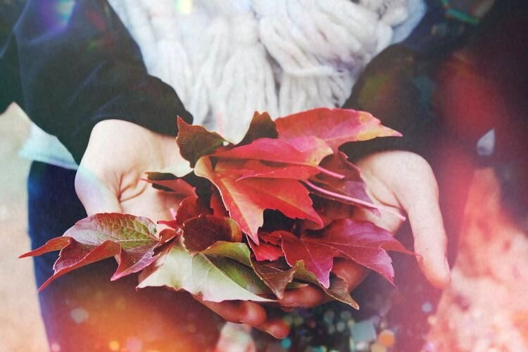 Mabon ritual - autumn leaves - spirit de la lune
