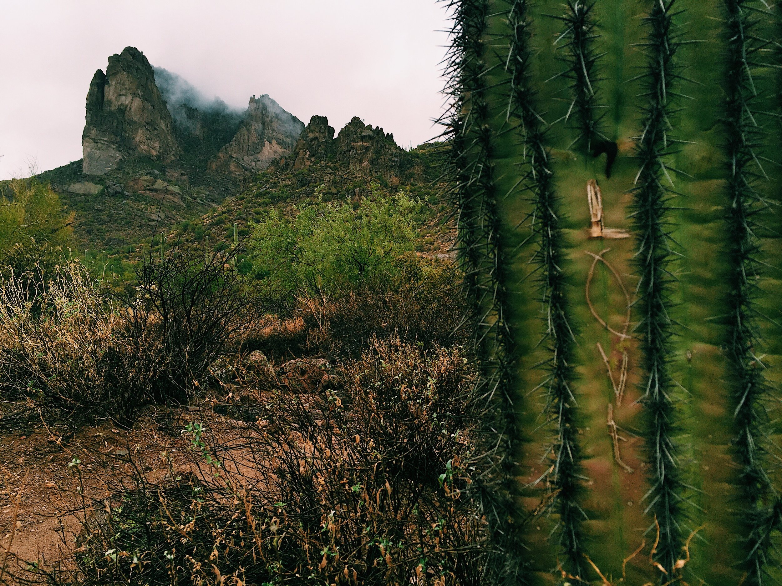 Wave Cave Trail in the Superstition Mountains
