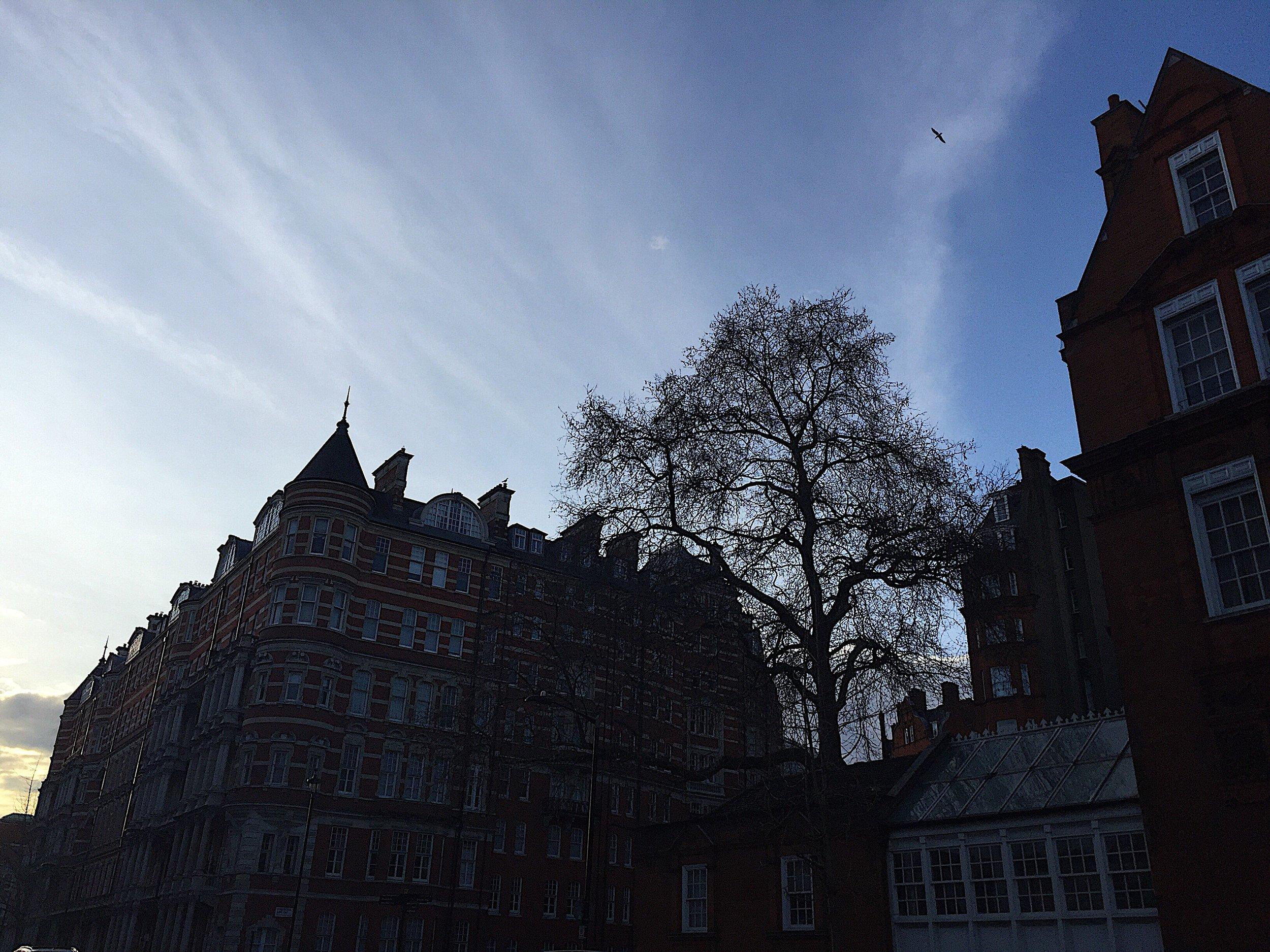 London 2018 Photo 12.JPG