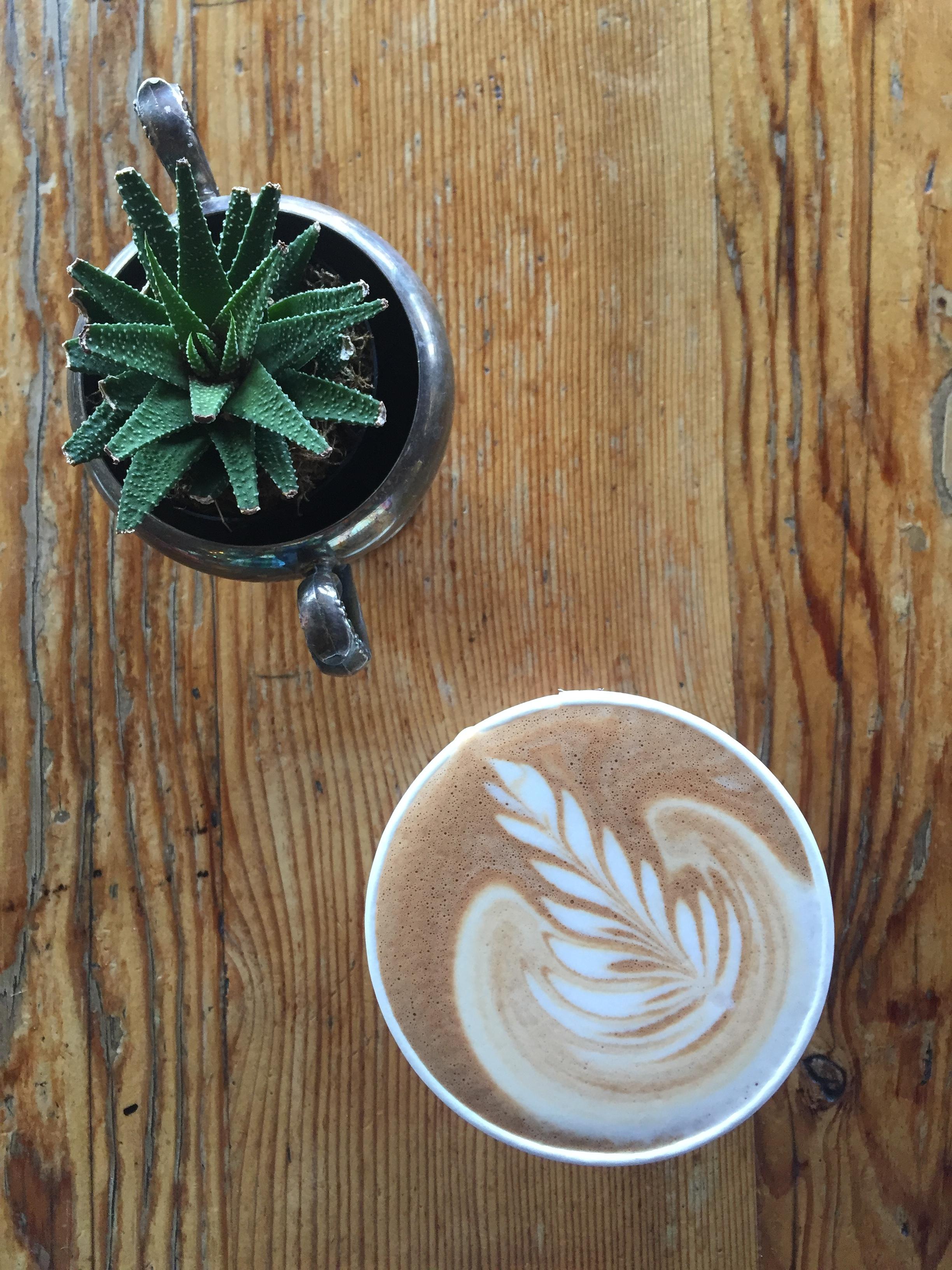 Javista Coffee