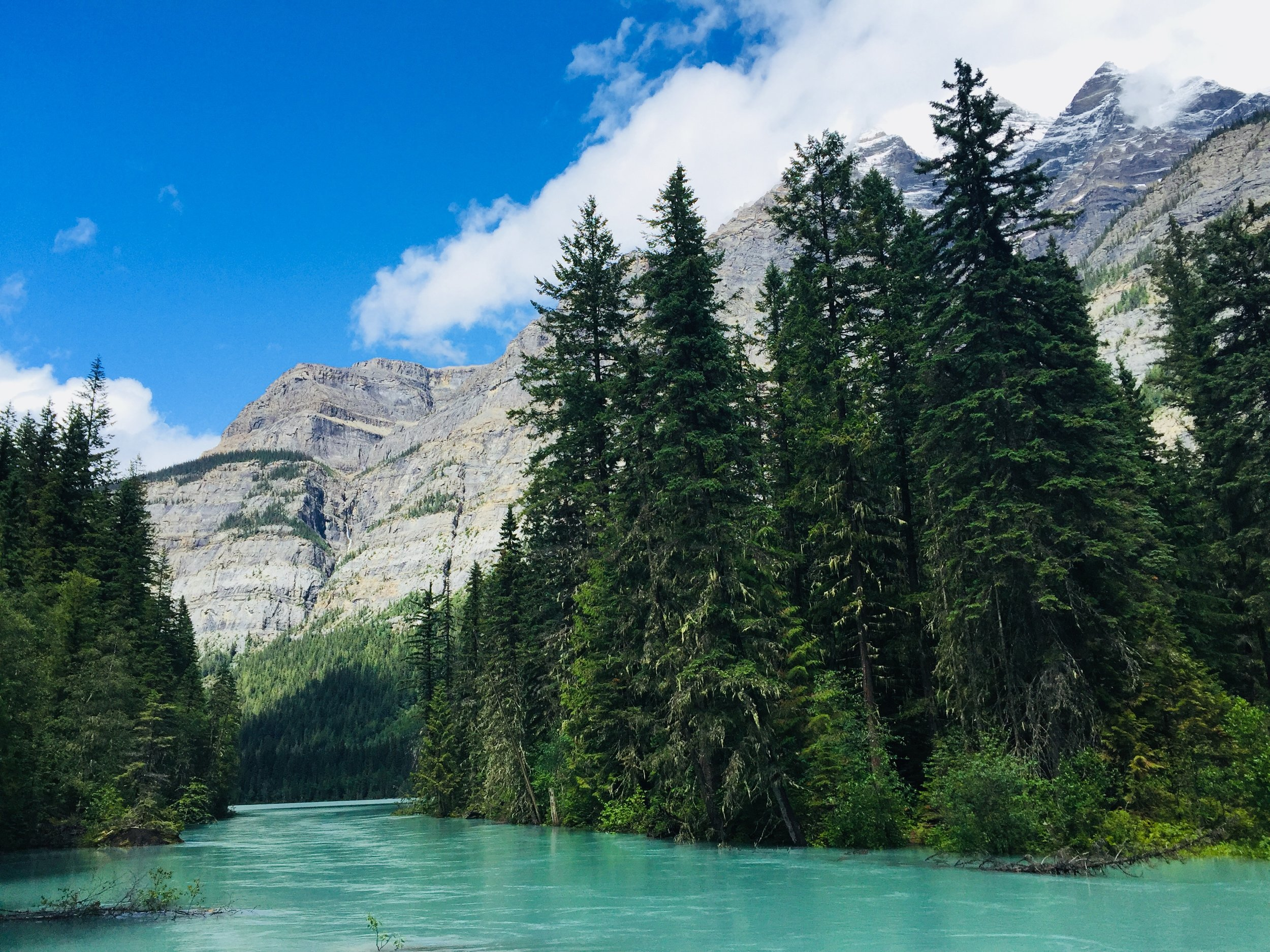 Kinney Lake Trail in Mt. Robson Provincial Park
