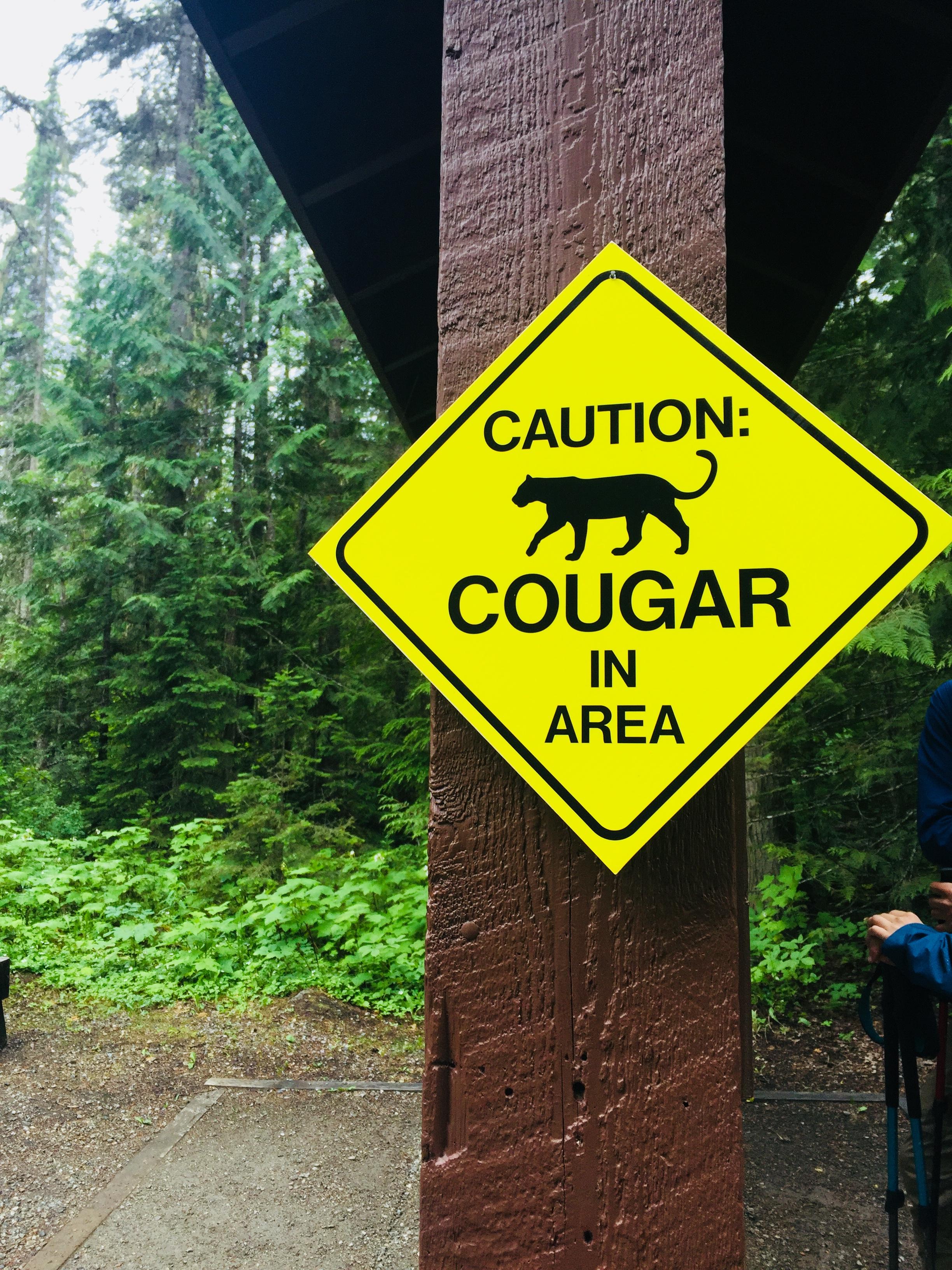 Canada June 2018 Mt Robson Provincial Park 7.JPG