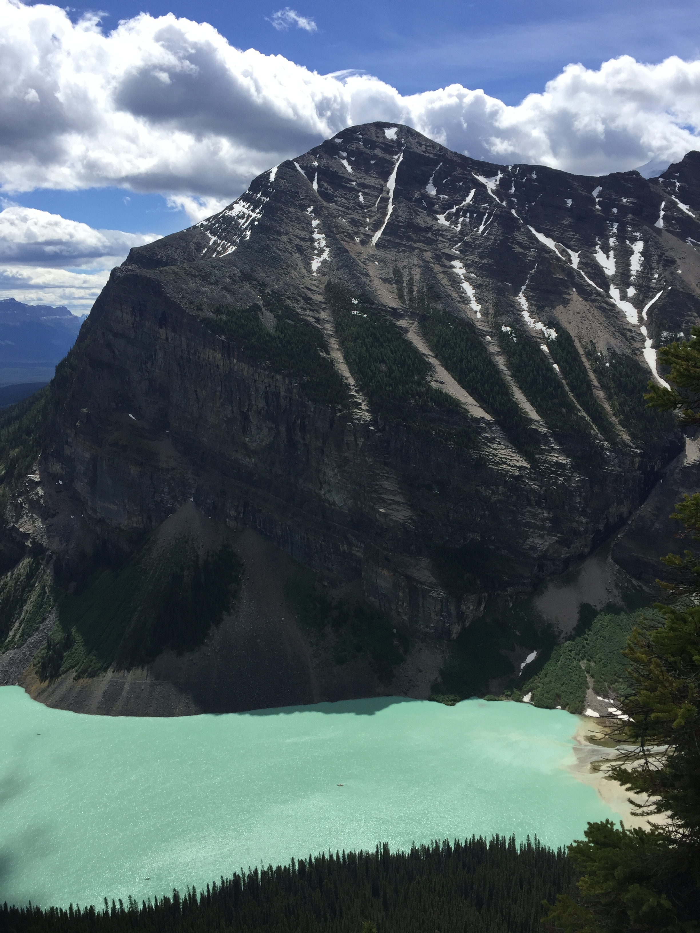 View of Lake Louise from Beehive Lookout (spot the canoes)