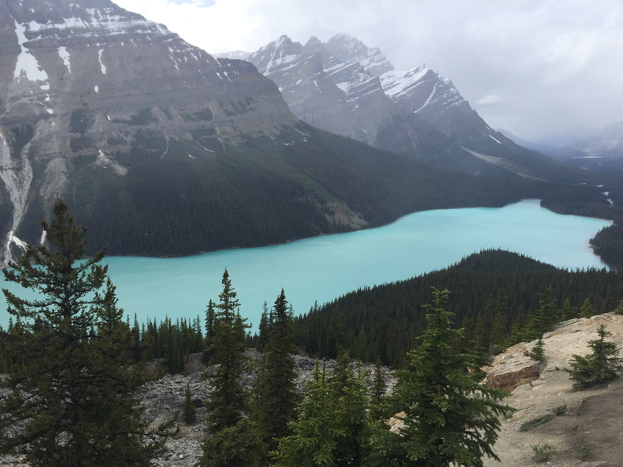 Icefields Parkway // Peyto Lake