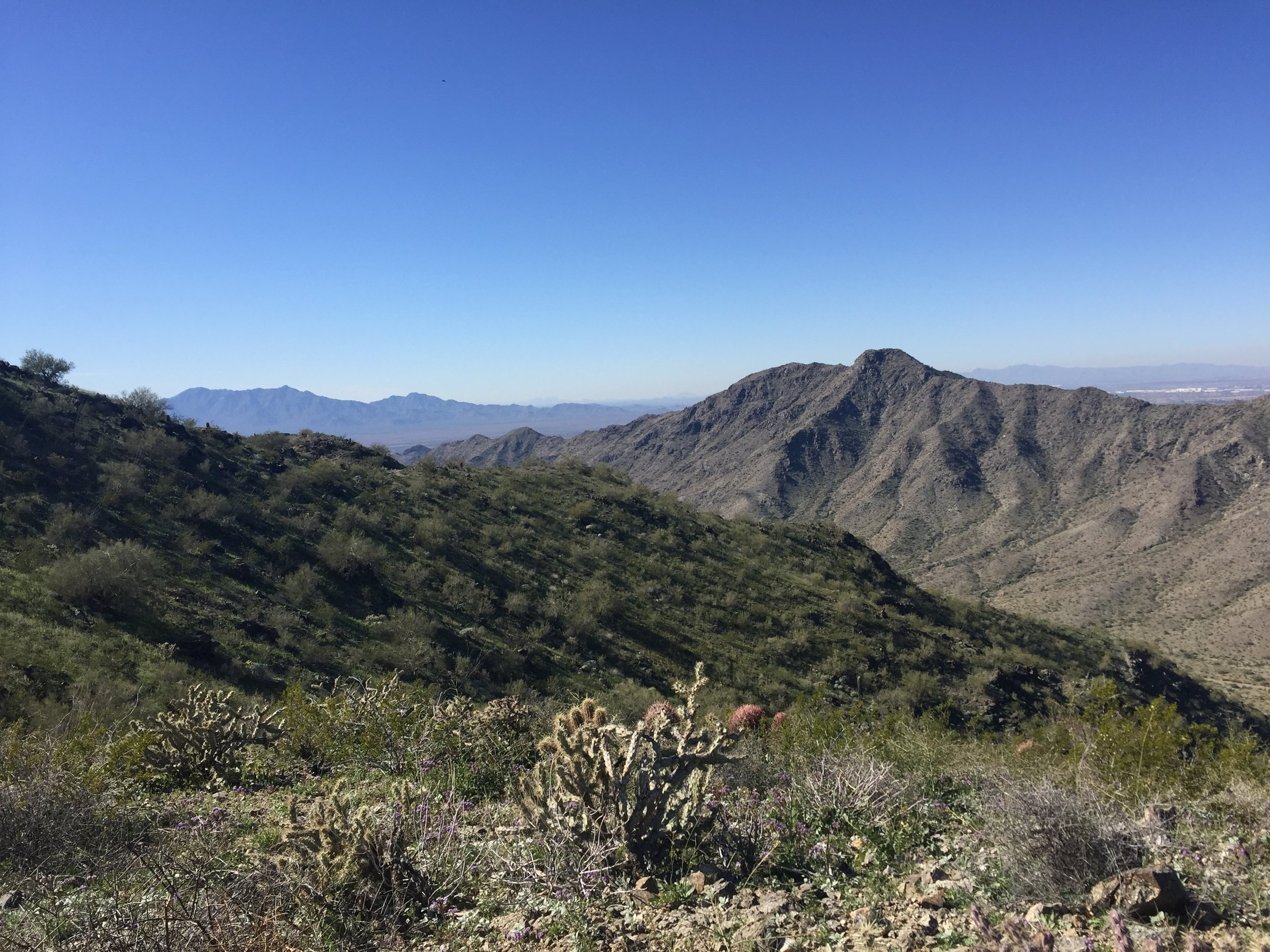 Phoenix February 2019 South Mountain.JPG