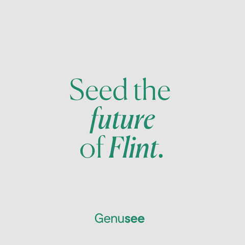 Seed Future of Flint_IG.png