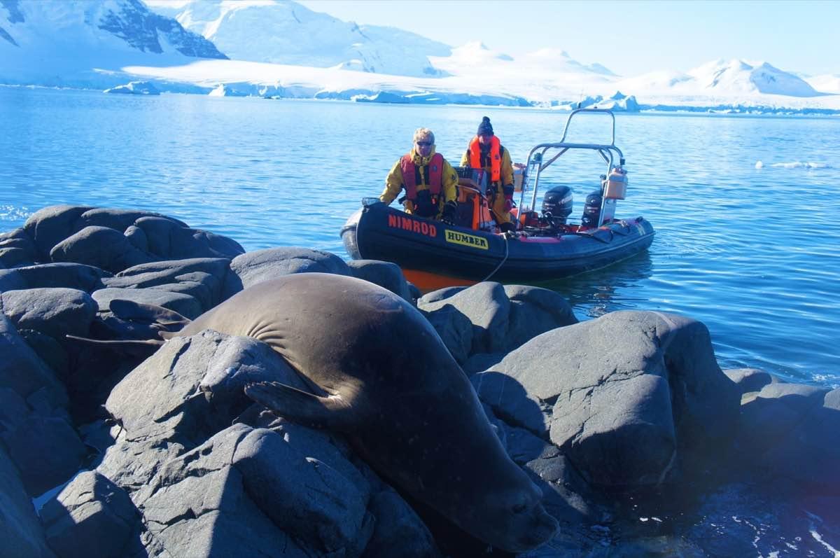 Humber boat Antarctica.jpg