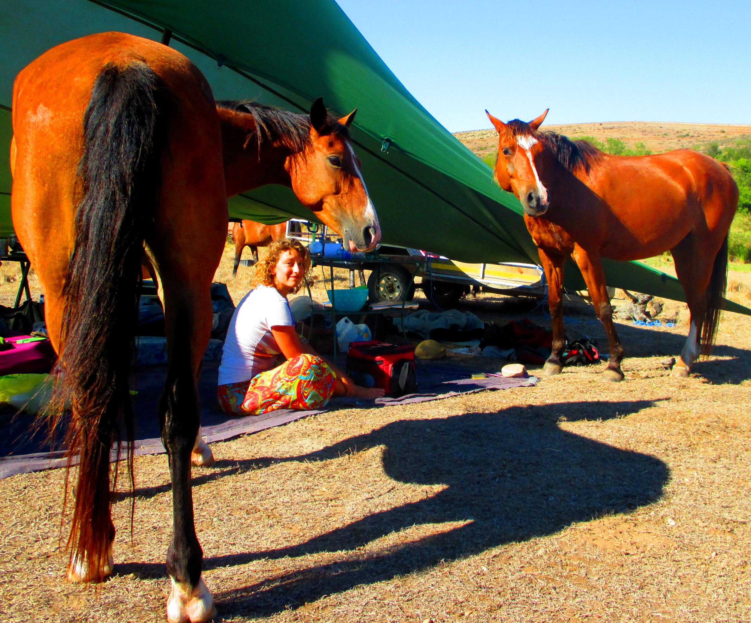 IMG_3310 Camping.jpg