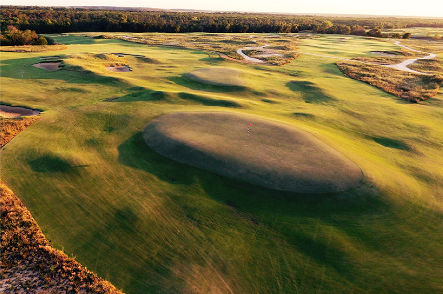TrinityForest1.png