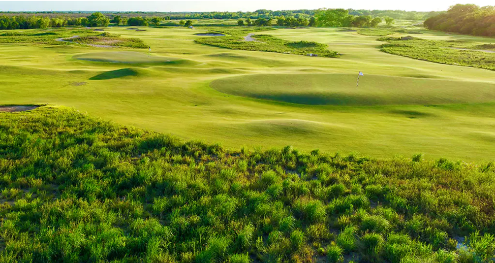 TrinityForest3.png