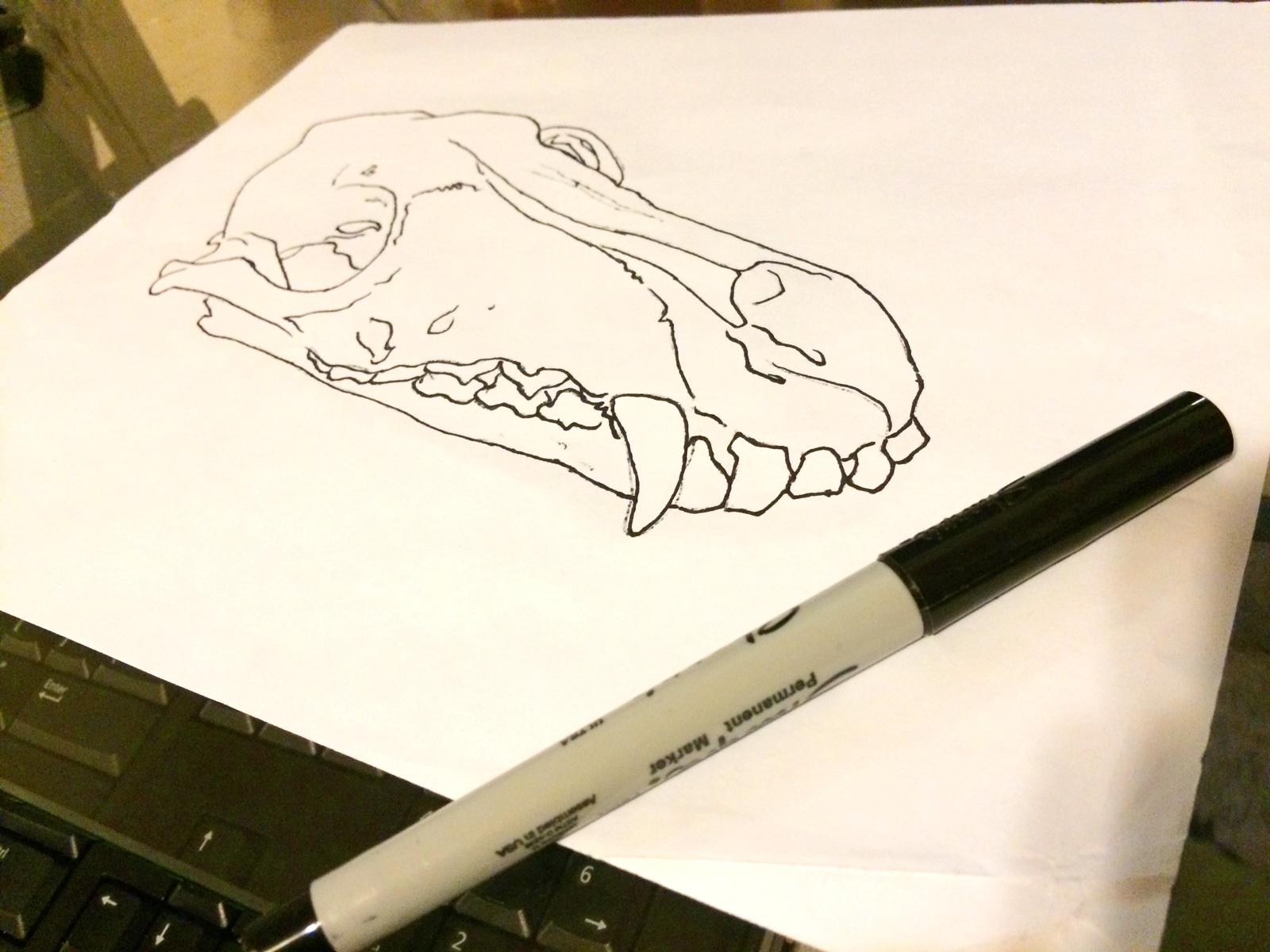 Sharpie_Sketch.jpg